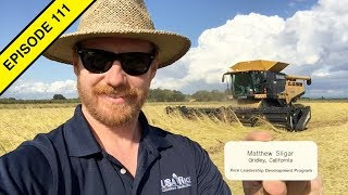 Rice Harvest! Lettuce Harvest! Tomato Harvest! And More! | 2019 California Tractor Videos