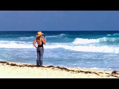 Best Horseback Riding Excursions in the Caribbean. Trails and Swimming