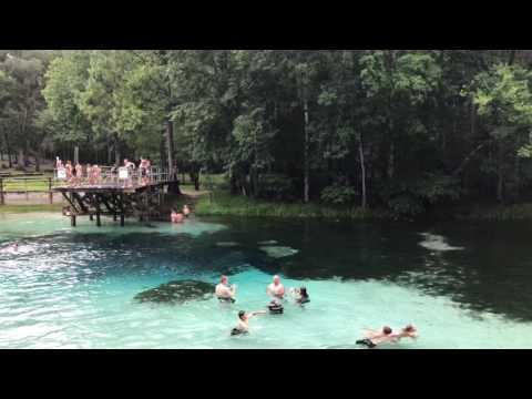 Blue Springs Park Florida June 2017