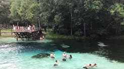 Blue Springs Park Florida June 2017