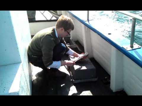Jens rensar fisk