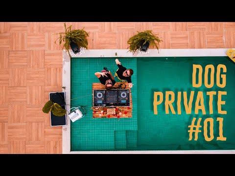 Dubdogz - DOG PRIVATE #01 (Represa) Set 100% Autoral