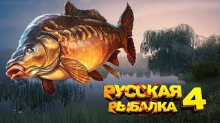 Русская Рыбалка 4 Стрим Рыбалка начальными снастями на озере Старый Острог