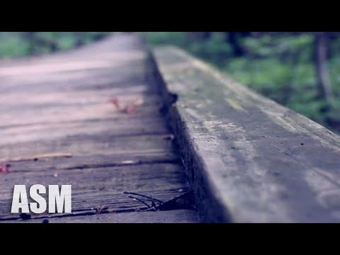 (No Copyright) Cinematic Documentary Background Music For Videos (Free Download) - AShamaluevMusic