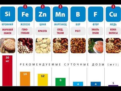 SC. Все пищевые добавки Е - разрешенные, запрещенные