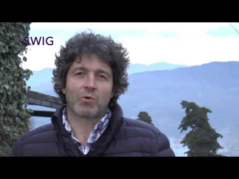 Italian Wine  -  Organic Producer from Tuscany -  Cedro Rufina -