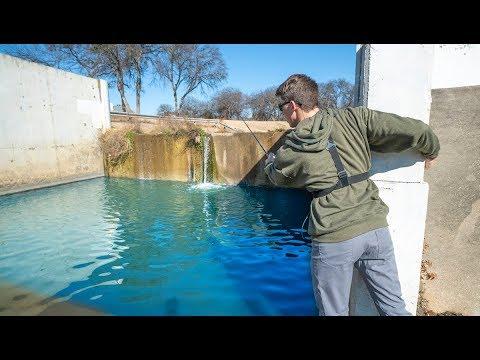 Fishing a Hidden Urban Waterfall For Texas Bass