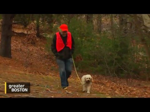 Adam Reilly Goes Hunting For Deer Hunters In The Blue Hills