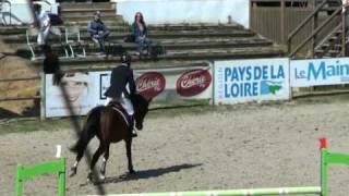 Baixar ♥ Thomas Rousseau and Ok du Rozel (stallion SF)