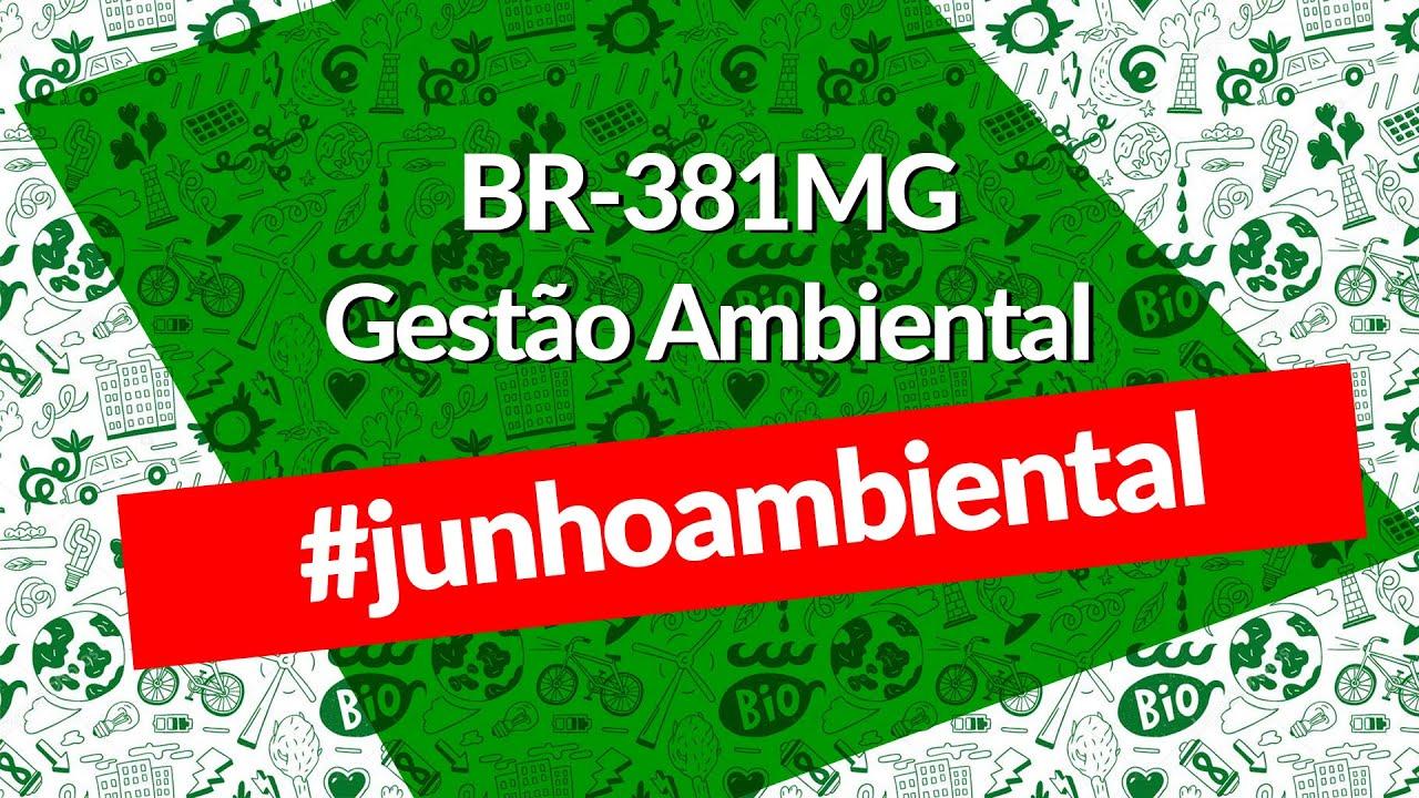 BR-381MG, conheça a Gestão Ambiental nas obras de duplicação