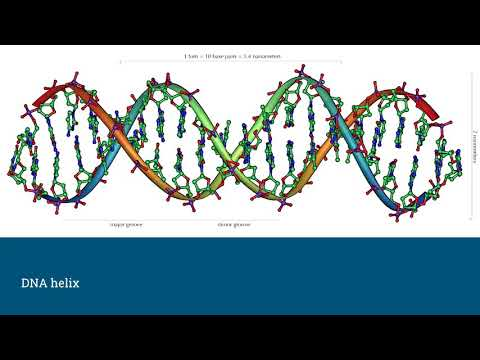 DNA: The Code of Life (SHA2017)