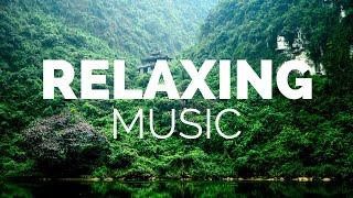 大自然輕音樂 | 深度睡眠 , 放鬆 , 卡農小提琴 , 背景音乐 轻快 , 安靜 , 音樂 , 寶寶安靜睡覺音樂 , 安眠曲 寶寶睡 , 宮崎駿鋼琴音樂 , 轻音乐 放松 , 輕音樂