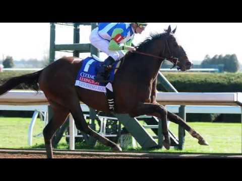 HorseCenter Preakness Edition