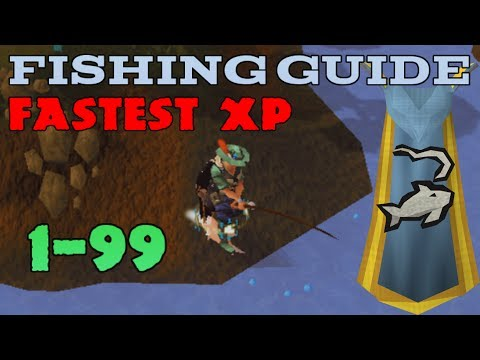 Runescape 1-99 Fishing Guide 2014 - AFK And Fastest XP Methods [P2P & F2P]