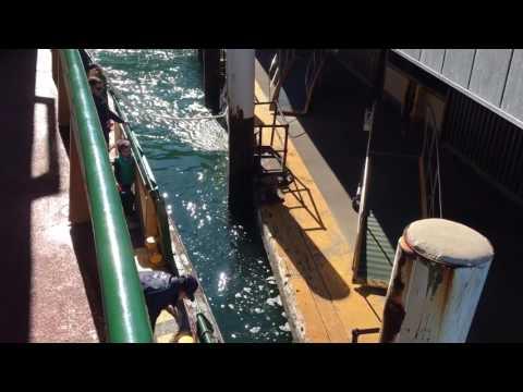 Approaching Port Jackson Sydney