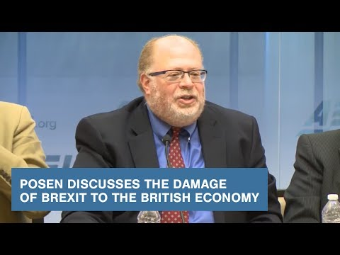 Posen Discusses the Damage of Brexit to the British Economy
