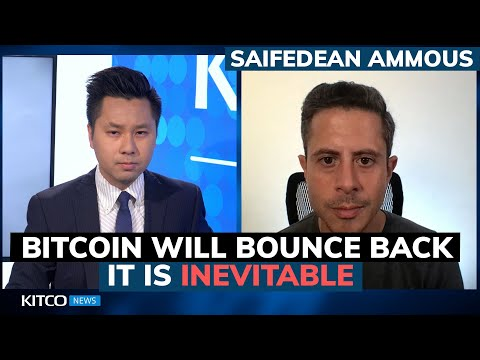 Bitcoin Price Falls Below $30k, But China Ban Can't Stop Inevitable Comeback – Saifedean Ammous