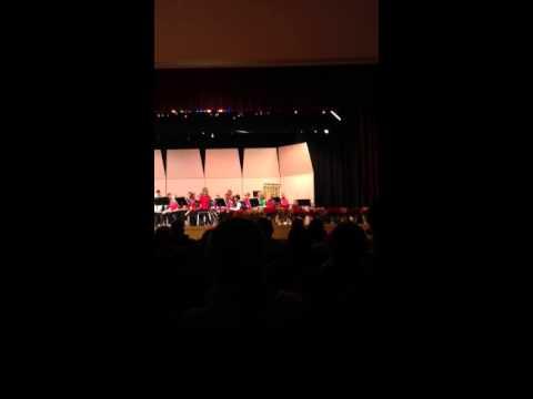 Hamburg area middle school concert