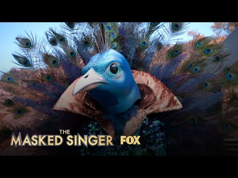 The Clues: Peacock | Season 1 Ep. 9 | THE MASKED SINGER