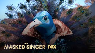 The-Clues-Peacock-Season-1-Ep.-9-THE-MASKED-SINGER