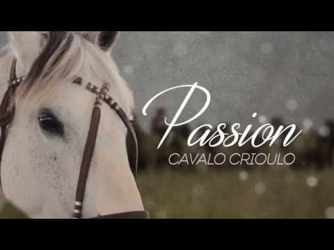 Passion | Cavalo Crioulo EP 01 (chamada)