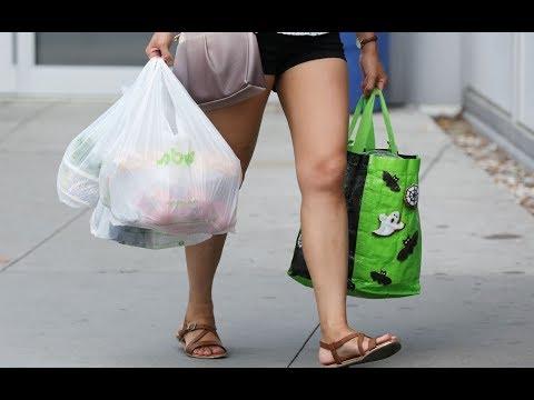 umwelt--und-klimaschutz:-das-aus-für-die-plastiktüte-ist-beschlossen