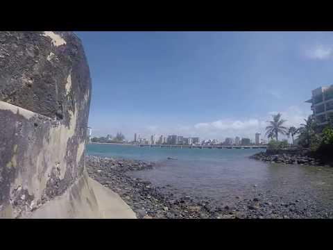 Barracuda and Snook Action in San Juan, Puerto Rico!