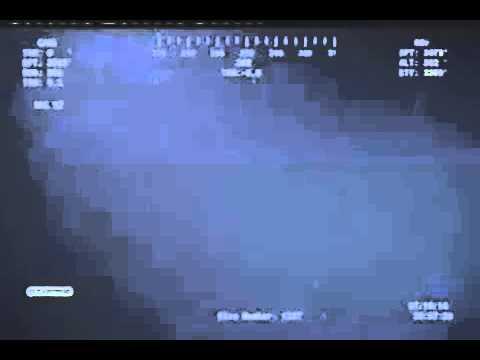 Deepwater Horizon oil spill 11th July 2010 Sharks