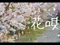 フル歌詞付き【花唄/TOKIO】高画質・高音質 ミュージックビデオ Cover