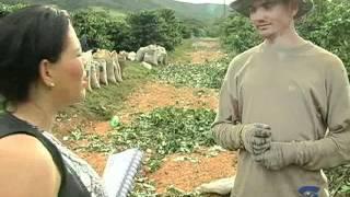 Dia 23 de junho comemora se o dia do lavrador