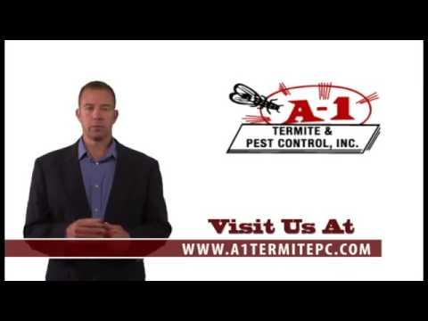 Radon Testing   Treatment Services
