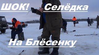 Зимняя рыбалка За корюшкой всей деревней в море Такое впервые селёдка стала клевать у Олега