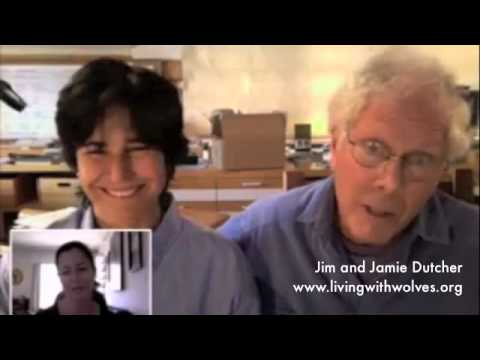 Annabel Ruffell interviews Jim and Jamie Dutcher, who have studied wolves for over 20 years