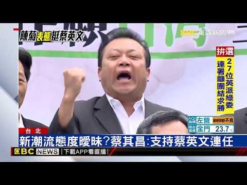 不挺賴清德!綠委:全力支持蔡英文競選連任