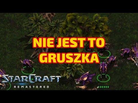 NIE JEST TO GRUSZKA - REMASTERED Kampanie - Zerg #9