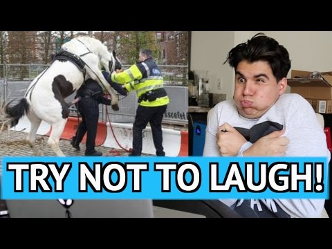 Thumbnail: TRY NOT TO LAUGH CHALLENGE! 3 (REALLY HARD)