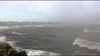 ساحل بورسعيد صباح الاربعاء 11 ديسمبر 2013