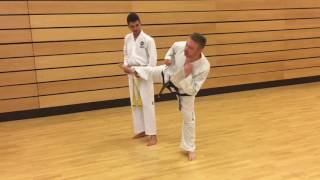 Banstead TaeKwon-Do Fun from July 2017