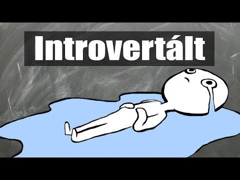 Magányos vagy? 📚Használati útmutató az Introvertált Személyiségedhez thumbnail