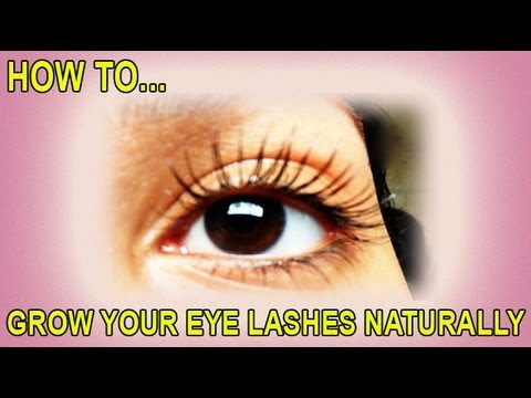 How to Grow your Eyelashes Longer Naturally - Updated ...