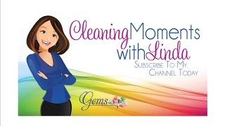 Toilet Cleaning with Norwex - Cleaning Moments With Linda