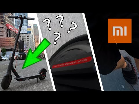 Should You Get An Electric Scooter In NYC?
