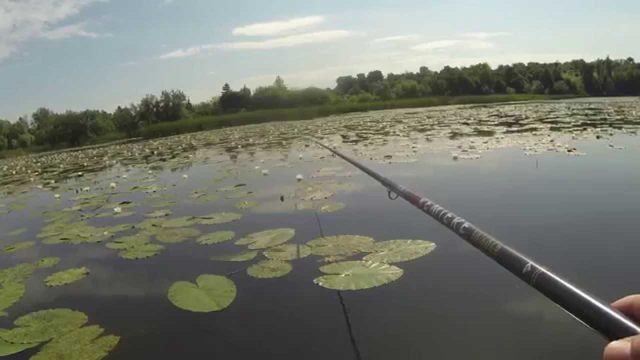 Удочка с боковым кивком — отличная снасть для ловли карасей