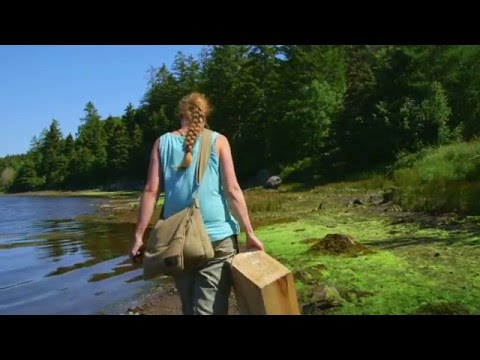 Food Foraging in Newfoundland and Labrador