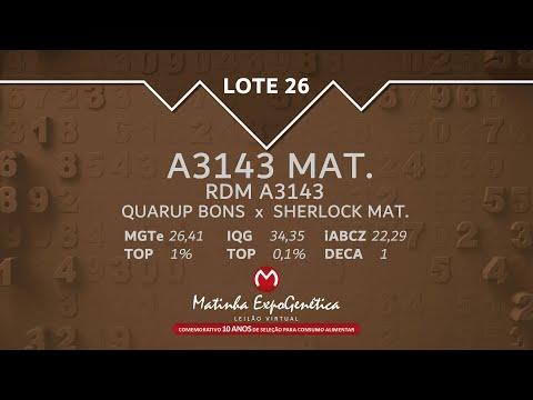 LOTE 26 MATINHA EXPOGENÉTICA 2021