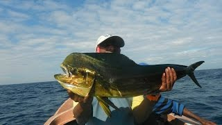Fishing in Sri Lanka (Landing a Mahi Mahi on 21st Dec 2014 off Dehiwela)