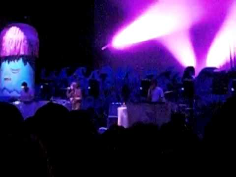 Animal Collective (1 of 11)