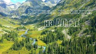 Рыбалка на хариуса в горах Алтая /Озеро Тальмень, гора Белуха, дикая природа Горный Алтай/