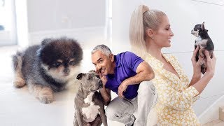 Hilton Pets meets Cesar Millan The Dog Whisperer