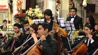 Concierto Navideño (22/12/2015)